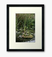 Botanical Greenery Framed Print