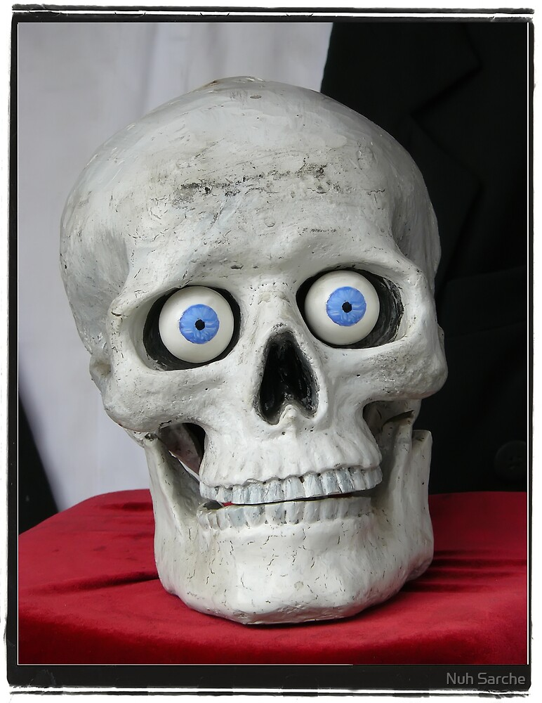 New eyes for an old skull... by Nuh Sarche