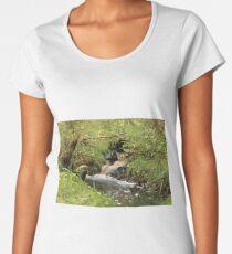 fast stream long exposure Women's Premium T-Shirt