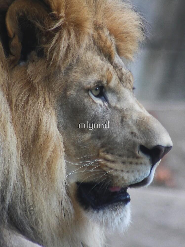THE KING by mlynnd