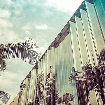Beverly Hills - Palm Reflections IV by vanroy