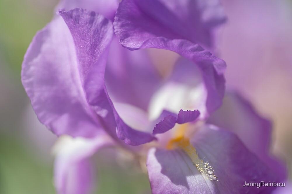 Aphrodite Iris Macro by JennyRainbow