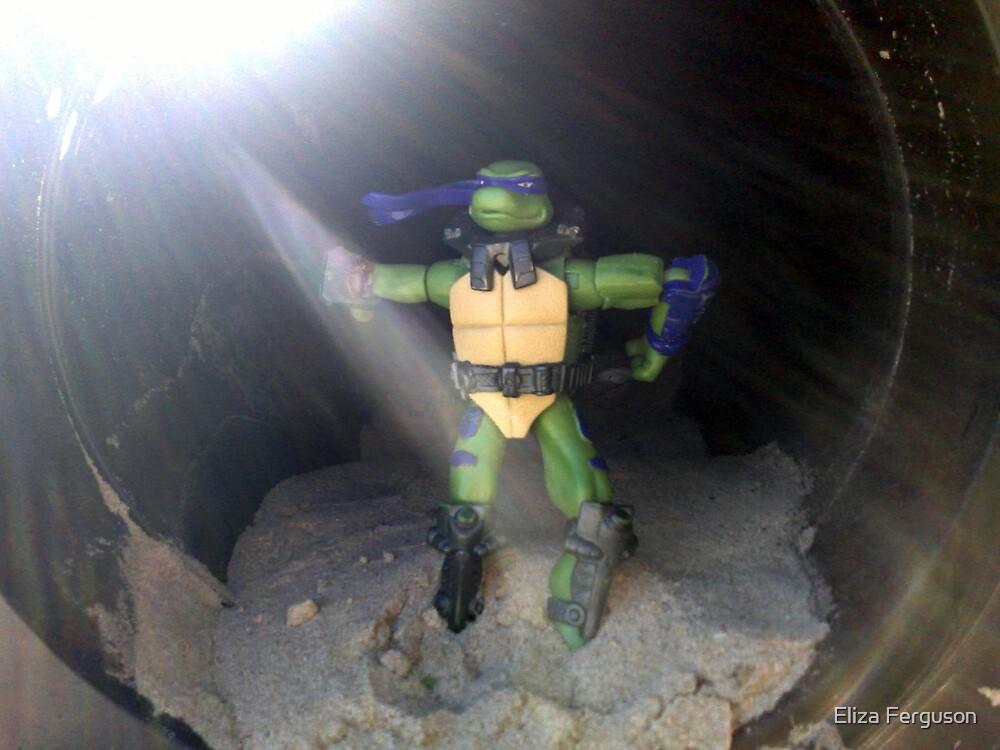 When Turtles Go on Holidays by Eliza Ferguson
