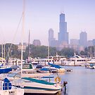 Chicago Skyline including Sears Tower (Alan Copson © 2007) by Alan Copson