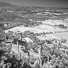 Neuschwanstein Castle. Bavaria. (Alan Copson ©) by Alan Copson