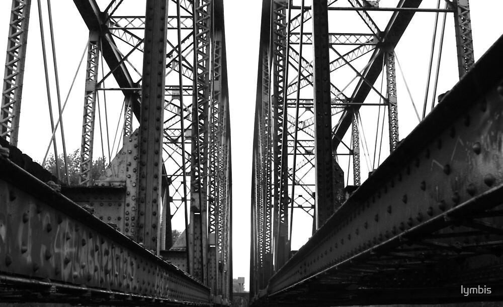 Twin Bridges by Lynn Stratton