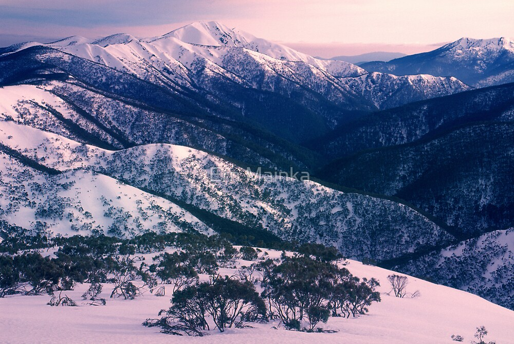 Mount Feathertop, Alpine NP, Australia. by Ern Mainka