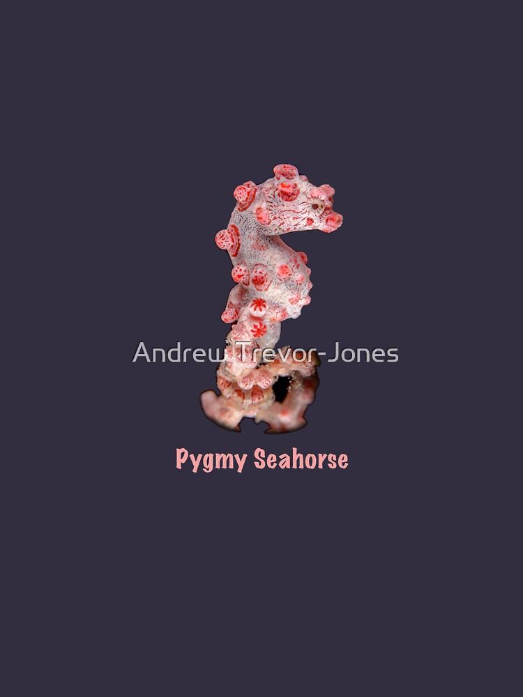 Pygmy Seahorse by andrewtj