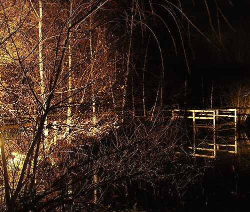 Pond at Night #1 by Kate Hore