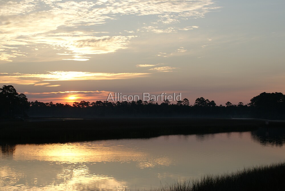 Beautiful Morning by Allison Barfield