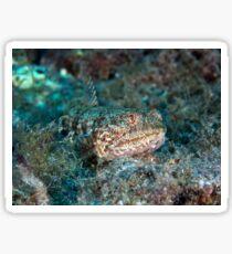 lizard fish Sticker