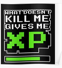 """What doesnt kill me gives me XP"" Poster"