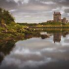 Dunguaire Castle by Derek Smyth