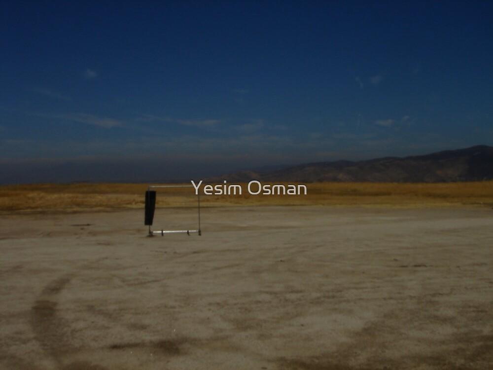 Mystery Rack... by Yesim Osman