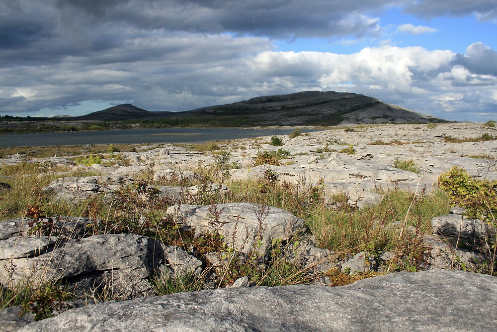 Mullaghmore mountain in the Burren by John Quinn