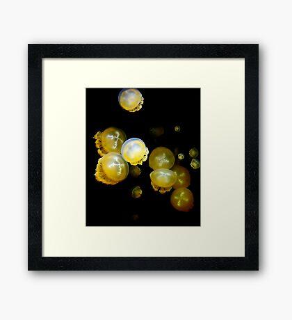 Jelly Soup Framed Print