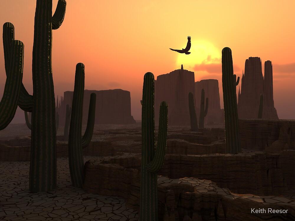 Desert Sunset by Keith Reesor