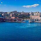 Naples Harbour by Yukondick