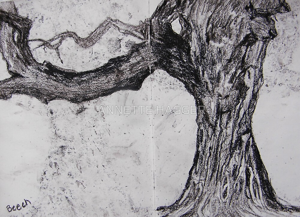 SPIRIT OF THE BEECH TREE by ANNETTE HAGGER