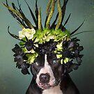 Flower Power, Darla by SophieGamand
