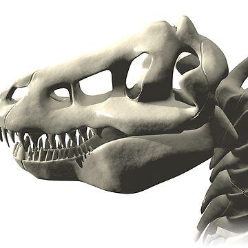 Dinosaur Skull by fotokatt