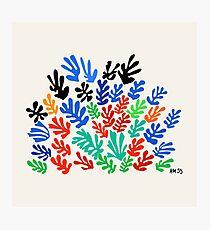 La Gerbe (Matisse) Photographic Print
