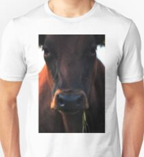 You're staring at me! T-Shirt