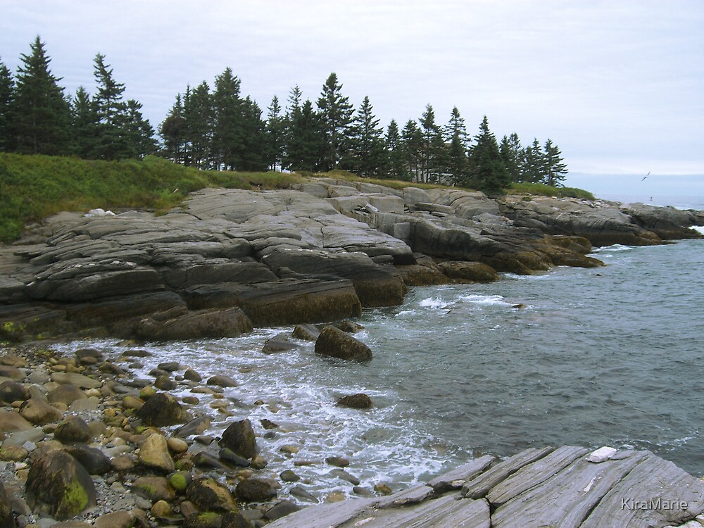Rocky Coast Maine by KiraMarie