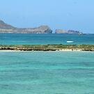 Flat Island by WeeZie