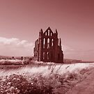 Whitby Abbey - Vintage Look by Jenn Ridley