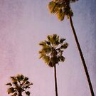 Pink Palms by A Barnes