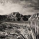 Red Rock in Selenium by Benjamin Padgett