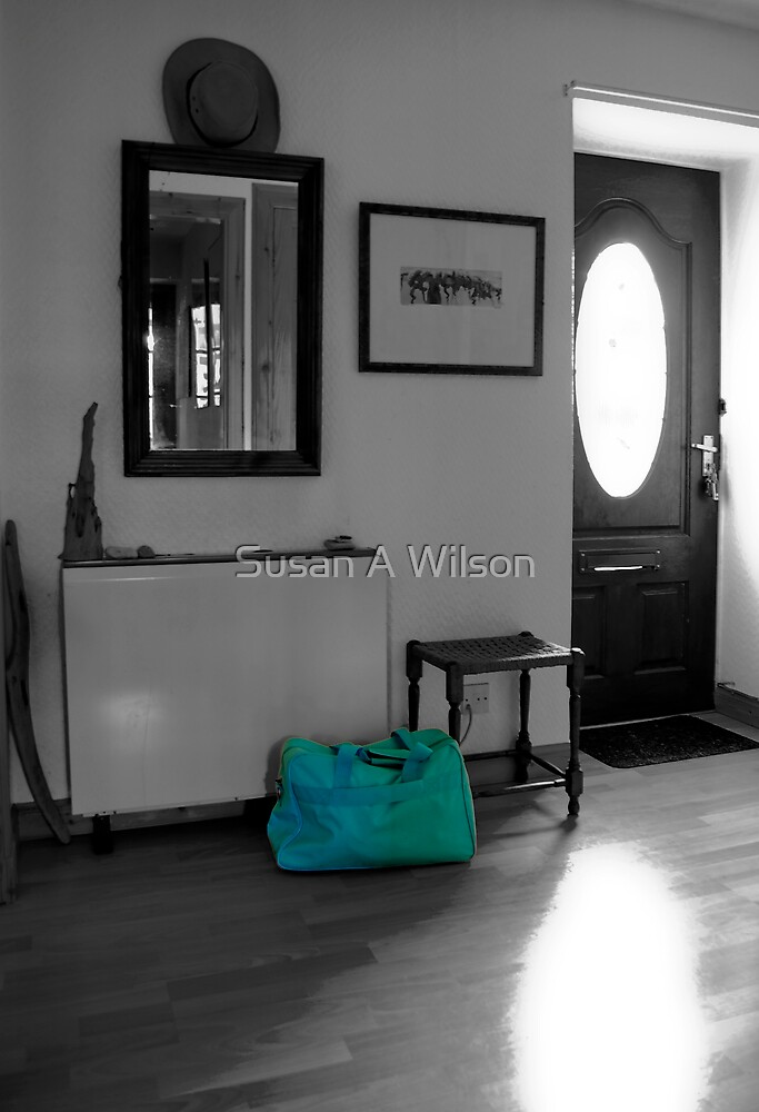 Baggage Blues by Susan A Wilson