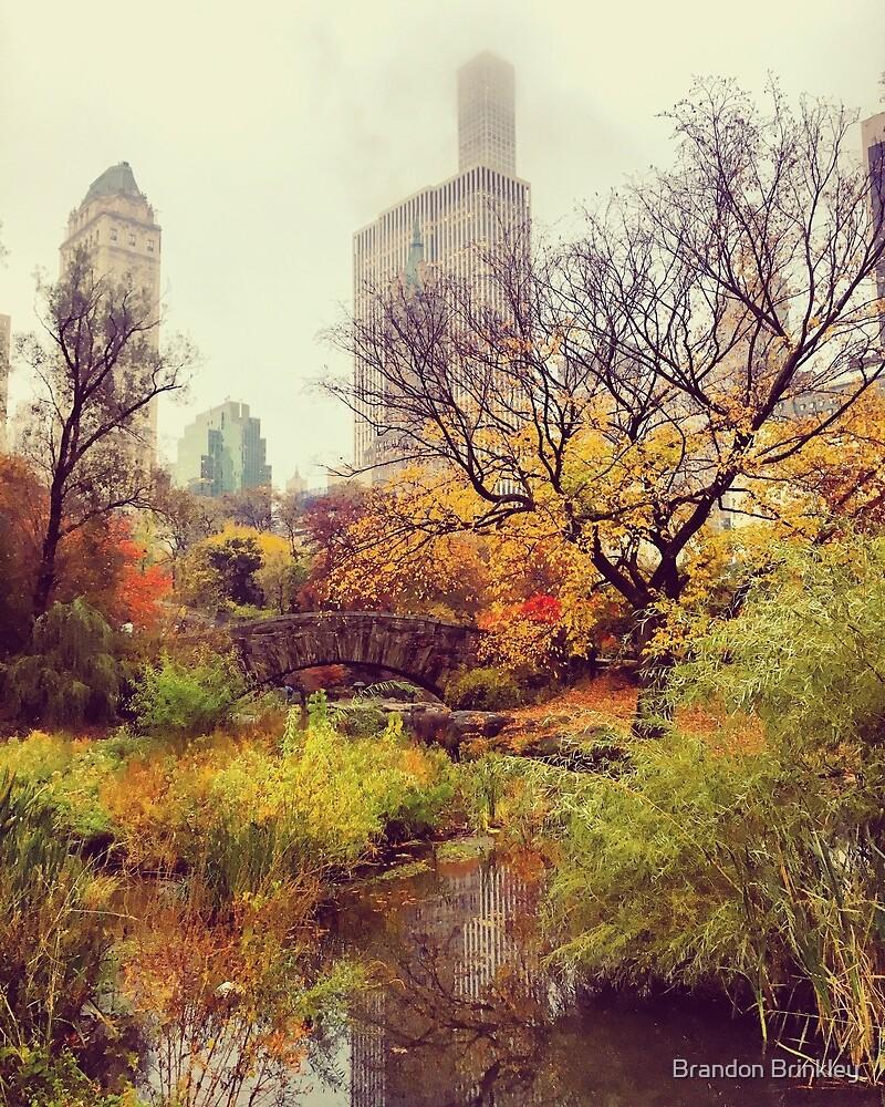 Fall into Central Park by BrandonBrinkley