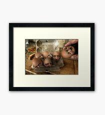 Eggsecution - The Prequel Framed Print