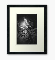 Moonlight madness Framed Print