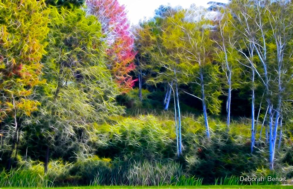 The Birches by Deborah  Benoit