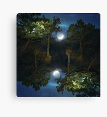 Moonset in coniferous forest Canvas Print