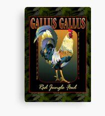 Gallus Gallus International Canvas Print