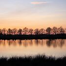 Evening Reflection by Jo Nijenhuis