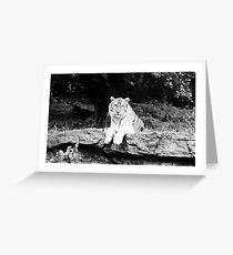 Tigar Greeting Card