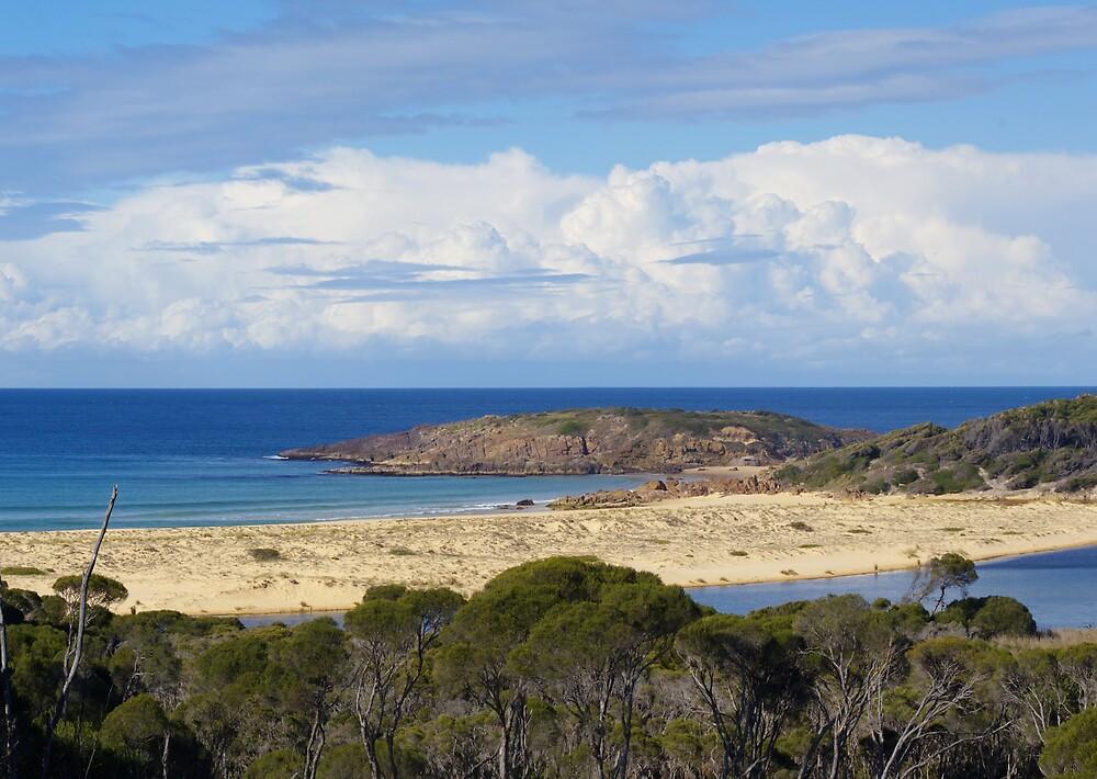 Bournda Island by Melva Vivian