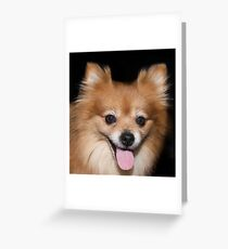 Binky  Greeting Card