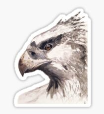 Watercolour Hippogriff  Sticker