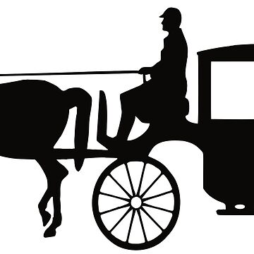 Man Driving Carriage Boy. by Claudiocmb