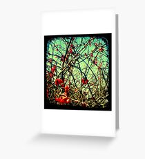 Blossom Frenzy - TTV Greeting Card