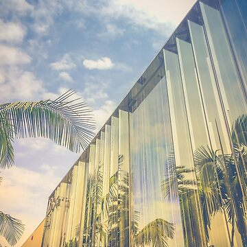 Beverly Hills - Palm Reflections by vanroy