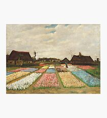 Flower Beds in Holland by Vincent Van Gogh 1883  Photographic Print