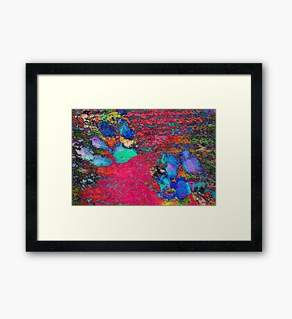 Paw Prints Colour Explosion Framed Print