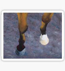 Horse front legs Sticker